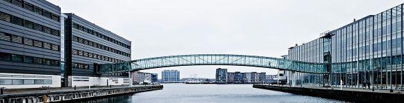 aalborg-university-bridge